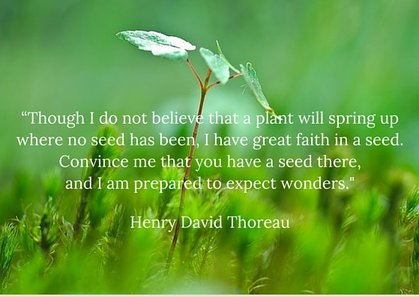 Quote - Henry David Thoreau